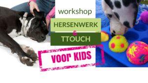 KIDS workshop TTouch & Hersenwerk